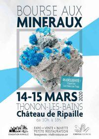 6e minerale en fossiele uitwisseling