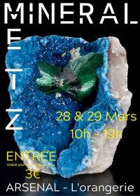 Eerlijk voor mineralen, fossielen en edelstenen
