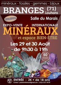 Eerste tentoonstelling tentoonstelling verkoop van mineralen uit Branges