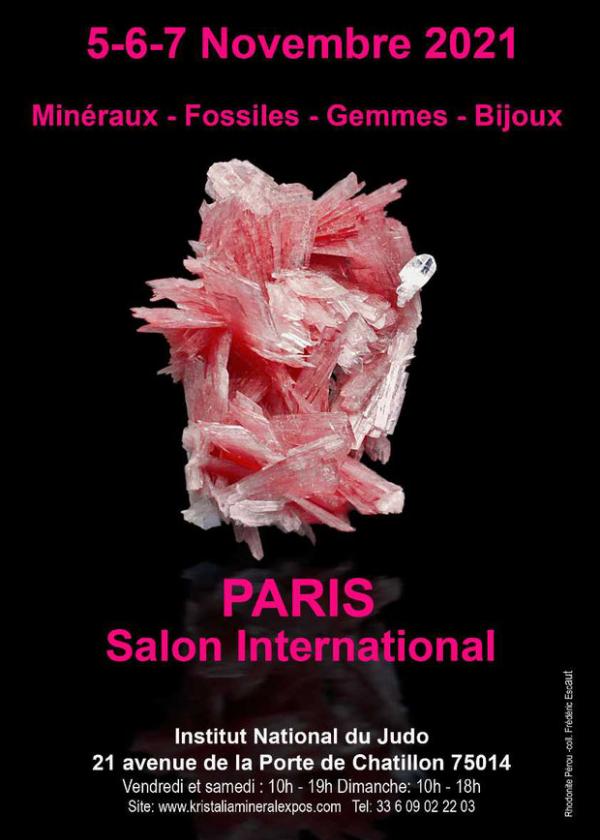 Internationale handelsbeurs van Parijs