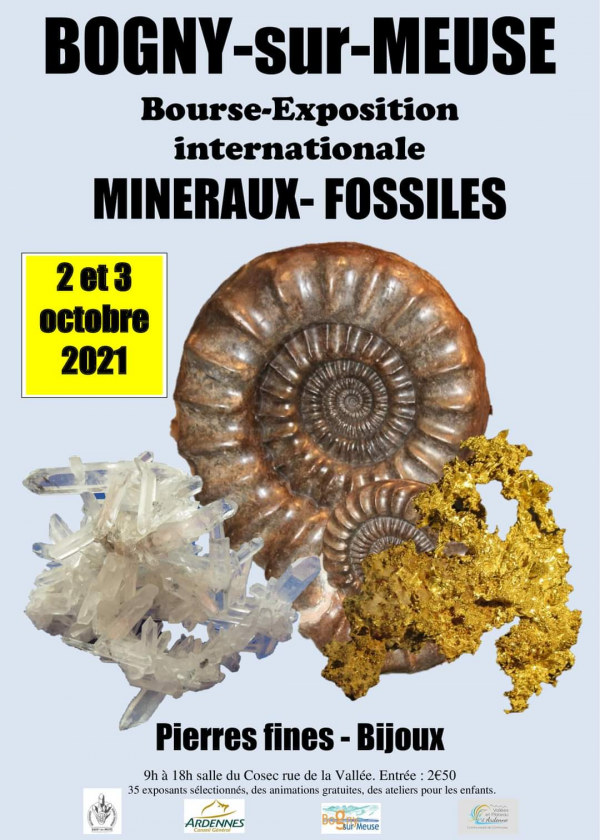 Fossiele mineralen International Exhibition Fellowship