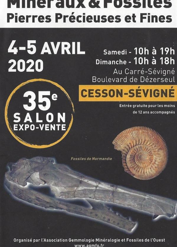 35e Fossil Minerals show