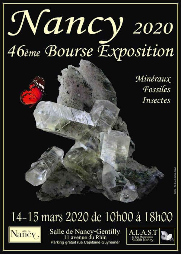 46e beursbeurs van fossiele mineralen en insecten