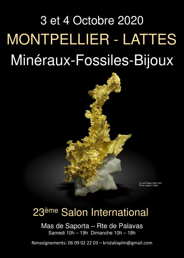 International Exchange Minerals Fossielen geslepen stenen Lattes Montpellier
