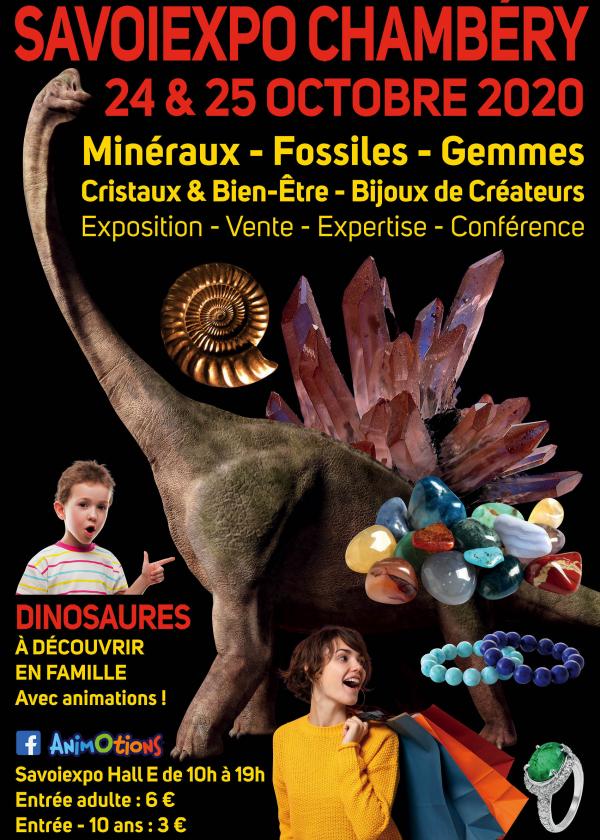 Minéralexpo Chambéry Mineralen Fossielen Edelstenen
